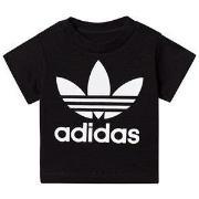 adidas Originals Black Trefoil Tee 6-9 months (74 cm)